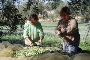 Teatro Naturale – Terra Matta: i prodotti dei Monti Iblei si presentano